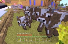 Minecraft Xbox – Animal Farm [50]