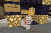 Minecraft Xbox – Cat To The Future [100]