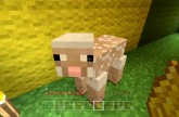 Minecraft Xbox – The Hungry Sheep [90]