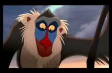 The Lion King – Circle of Life