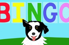 BINGO – Children's Song