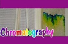 Easy Kids Science Experiments Chromatography