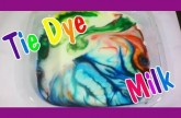 Easy Kids Science Experiments Tie Dye Milk