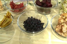 Dehydrated Snacks on Q13 FOX News | Cook With Amber
