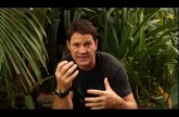 *YouTube Exclusive* Steve Backshall on a Deadly octopus – Deadly 60 in Australia