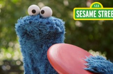 Sesame Street: Catch Us Every Morning & Afternoon!