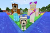 Minecraft Xbox – Player Launcher [238]