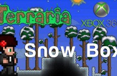 Terraria Xbox – Snow Box [85]