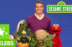 Sesame Street: What is Popular? Elmo and Andy Cohen Decide.