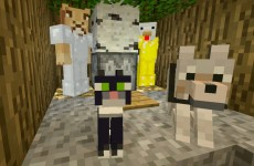 Minecraft Xbox – Bees And Bears [255]