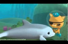 Octonauts and The Baby Dolphin (Season 1 – Episode 35) Full Episode
