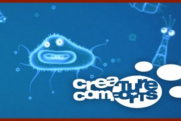 Diving | Creature Comforts