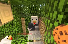Minecraft Xbox – Sky Den – Miracle Duck (48)
