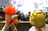 Flowers On The Wall | with Bunsen and Beaker | Muppets Music Video | The Muppets
