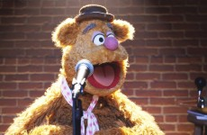 Fozzie's Bear-ly Funny Fridays #18 | Fozzie Bear Jokes | The Muppets