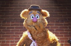 Fozzie's Bear-ly Funny Fridays #19 | Fozzie Bear Jokes | The Muppets