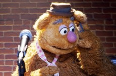 Fozzie's Bear-ly Funny Fridays #20 | Fozzie Bear Jokes | The Muppets