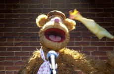 Fozzie's Bear-ly Funny Fridays #23 | Fozzie Bear Jokes | The Muppets
