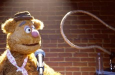 Fozzie's Bear-ly Funny Fridays #24 | Fozzie Bear Jokes | The Muppets
