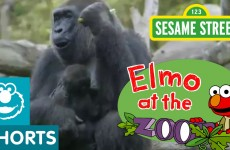 Sesame Street: Elmo Visits the Zoo (Elmo at the Zoo)