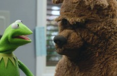 Top 5 Funniest Moments from Episode 8 of the Muppets
