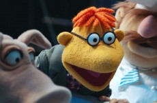 Top 5 Funniest Moments from Episode 9 of the Muppets